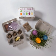 Eco-Egg Dye Kit
